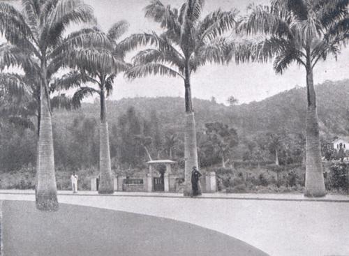 Rua Uçá 1935